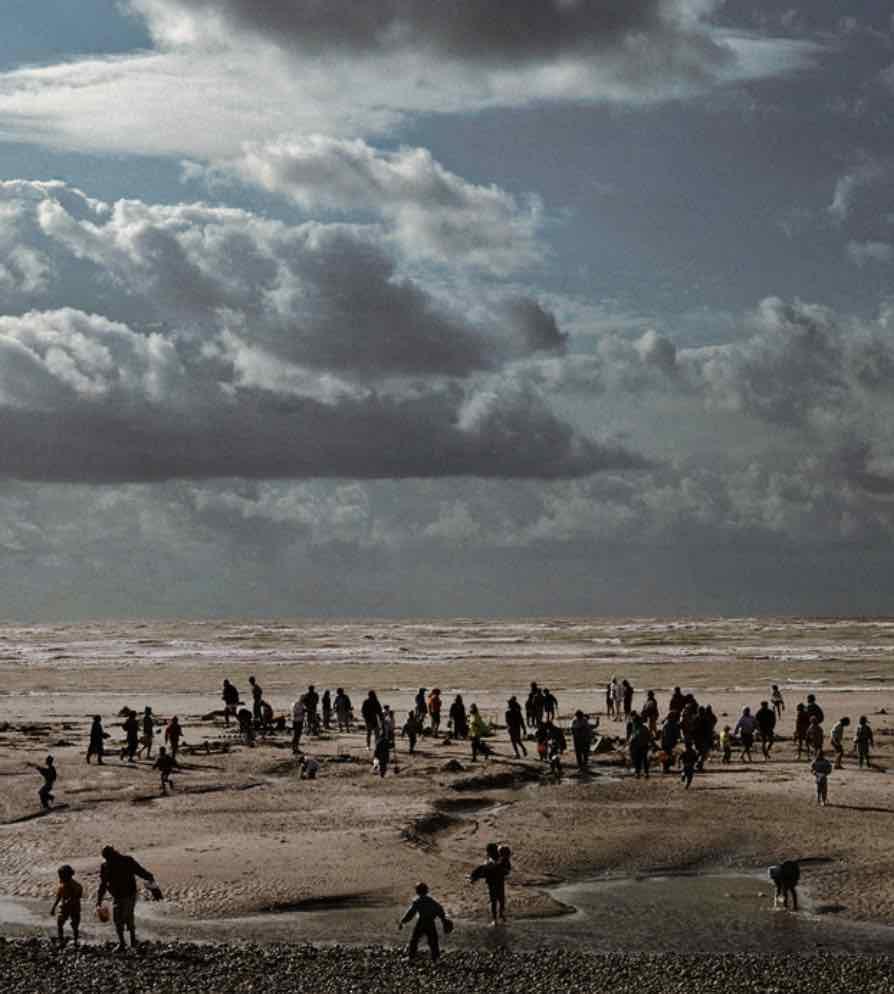 El mar y el humano